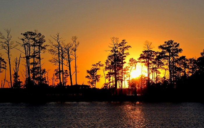 Blackwater named one of 10 best wildlife refuges