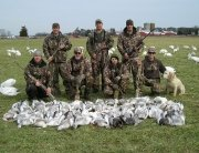 Visit Dorchester Hunting At Blackwater Refuge