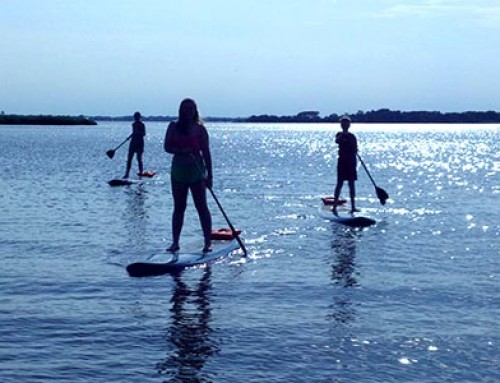 Over Board Paddle & Fitness