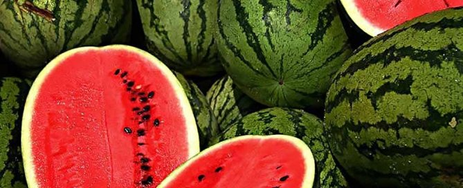 Great American Watermelon Blast