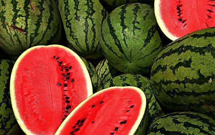 Watermelon Blast launches Aug. 27