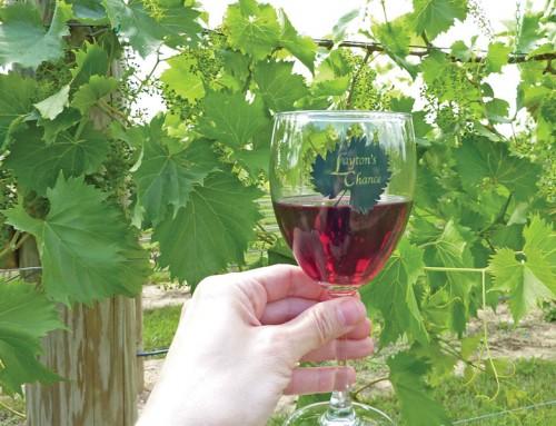 Layton's Chance Winery