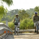 Bicycling Couple Bridge