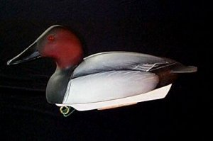 Canvasback by Ron Rue (Courtesy: DCHS)