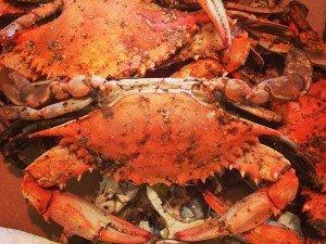 Waterman's Crab Feast