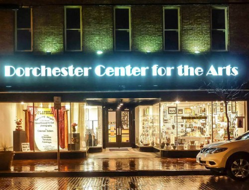 Partner Spotlight: Center for the Arts