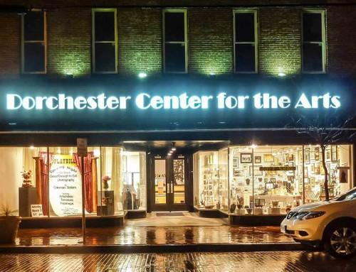 Partner Spotlight: Center for the Arts