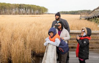 Family birding at Blackwater National Wildlife Refuge - Dorchester County, MD