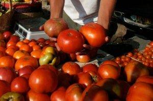 Cambridge Farmers Market