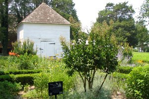 Heritage Museums & Gardens of Dorchester
