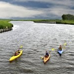Kayak Bestpitch