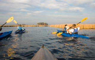 Kayaking in Dorchester County on Maryland's Eastern Shore - Photo by Stephen Bland