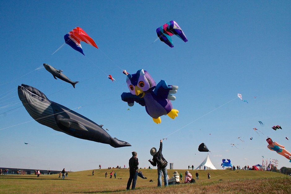 Kite Festival at Sailwinds Park - in Cambridge, MD