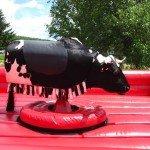 Mechanical Bull Riding at Lil Bitta Bull BBQ