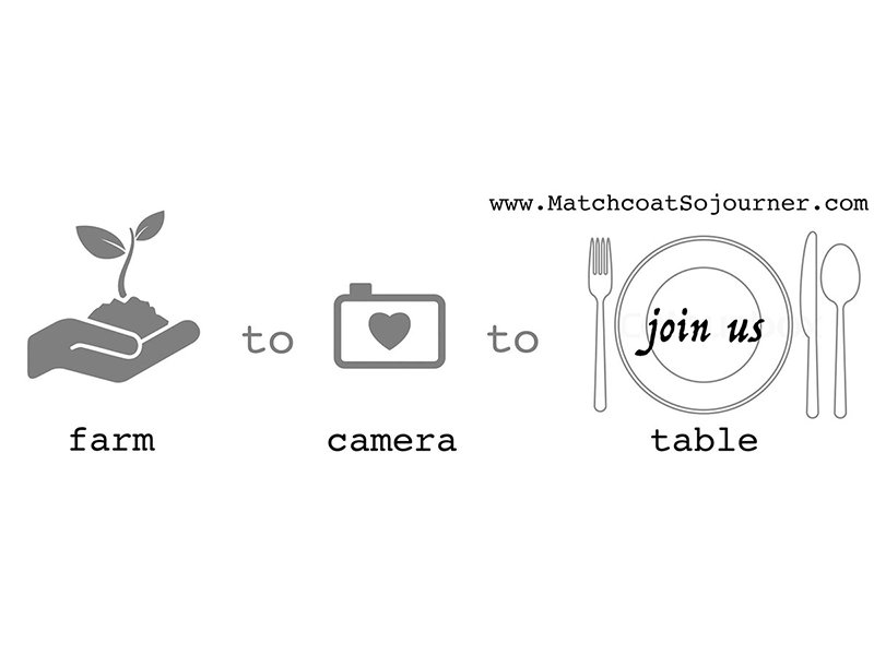 Farm to Camera to Table with Matchcoat Sojourner