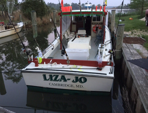 Go Crabbing & Fishing with Local Waterman