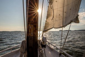 Sunset Sail on the Skipjack Nathan of Dorchester in Cambridge, MD