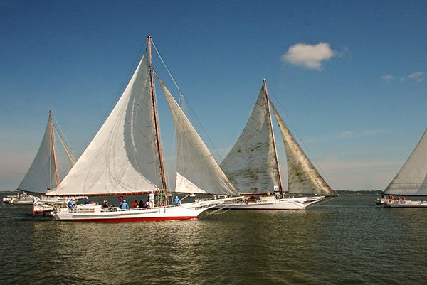 Choptank Heritage Skipjack Race, Cambridge, MD - a Chesapeake Bay tradition
