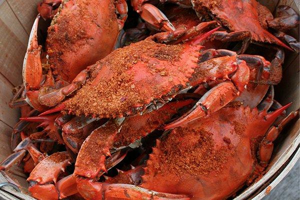Seafood Feast-I-Val