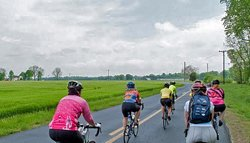 Wild Goose Chase Bicycle Tour for Women