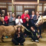 Yoga with Horses at Windy Way Horses