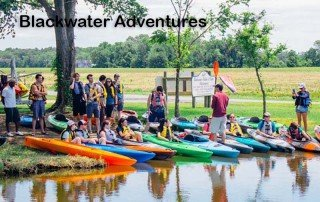 Blackwater Adventures